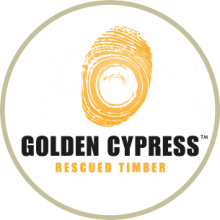 Golden Cypress